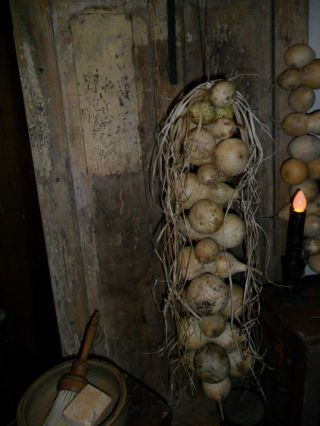 Primitive Early Look Gourd Garland /extra Long Dried Hanging Cluster,  Homestead photo