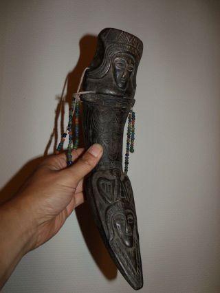Toraja Medicine Horn,  Shaman Medicine Horn,  Sulawesi,  No Batak Dayak Asmat $$ photo