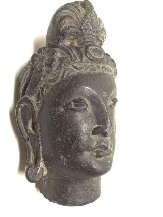 Gandhara / Gandharan Schist Stone Buddha Head Bust. photo