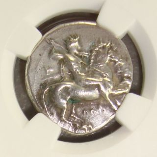 344 - 334 Bc Calabria,  Taras Ancient Greek Silver Didrachm Ngc Xf Fine Style photo