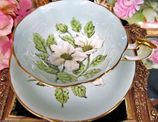 Paragon Tea Cup And Saucer Baby Blue Daisy Pattern Teacup Wide Mouth photo
