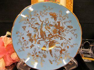 Coalport Tea Cup And Saucer Baby Blue & Gold Cario Bird Floral Teacup Pattern photo