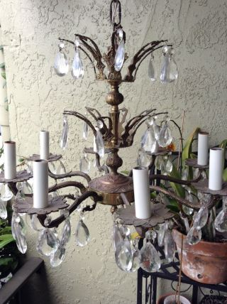 Stunning Antique Brass Chandelier Crown Styled 8 Arm Crystals Prisms photo