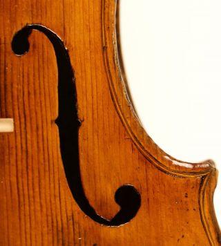 Old Violin Lab.  Amati Possibly By Gagliano Violon Violine Violino photo