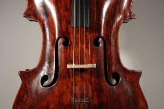 Picollo Baroque Cello From Around 1680 With Neck.  Soundfile photo