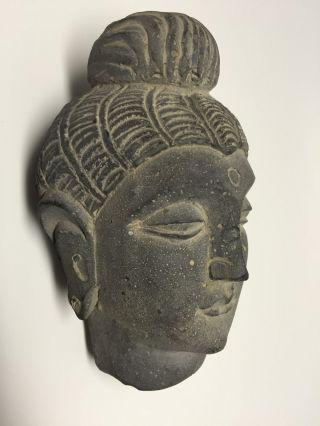 Gandhara / Gandharan Budha Schist Stone Bodhisattva Head Bust. photo