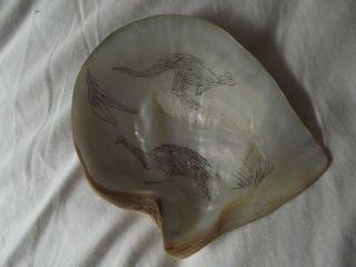 A Pearl Shell Engraving : Aboriginal photo