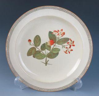 Antique 19thc.  Wedgwood Creamware 9.  75