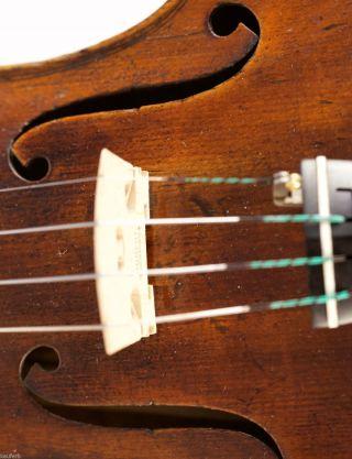 200,  Years Old Italian 4/4 Violin Violon Geige Lab.  : Pressenda 1828 photo