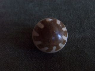 Pumtek Burmese Fossil Wood Bead - 10 Points - 3 Line Stripes - 17mm (4) photo
