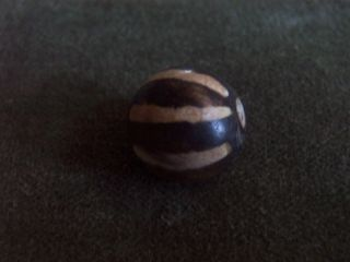 Pumtek Burmese Fossil Wood Bead - 6 Stripes - 15mm (3) photo
