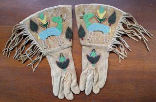 Antique Native American Beaded Leather Gauntlet Gloves,  Deer Elk Leaves,  Fringed photo