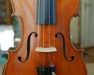 Fine German Handmade 4/4 Fullsize Violin - Brandmarked Hopf - 1900 ' S photo
