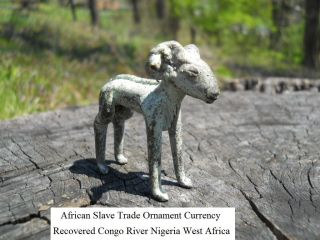Rare African Slave Trade Ornament Currency Recovered Congo River Nigeria Africa photo