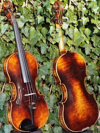Vintage Czech Violin Label.  Karel Pilar,  Hradec K.  Tone - Mellow,  Mature photo