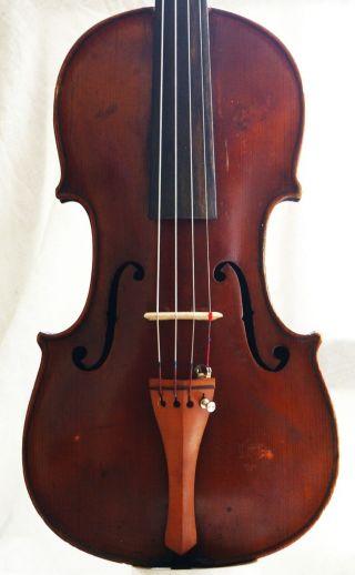 Antique Homolka? Violin photo