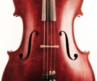 Old Rare 4/4 Cello C.  Candi 1912 Violoncello Viola Violin Italian? 大提琴 チェロ 첼로 photo