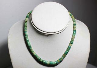 Fine Old Native American Kewa Santo Domingo Hand Cut Turquoise Heishi Necklace photo