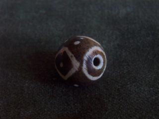 Pumtek Burmese Fossil Wood Bead - Diamond Pattern With Dots - 16mm (11_ photo