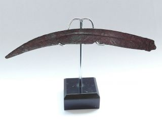 Rare Celtic Scordisci Tribe Iron Artefact Sica - 3rd Cent Bc photo