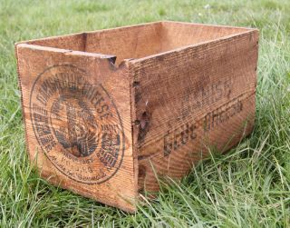 Vintage Danish Blue Cheese Pine Box - Kitchen Storage Rustic Farmhouse photo