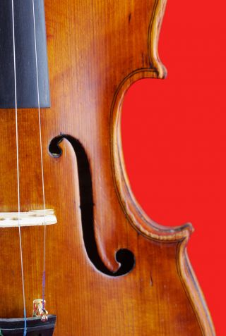 Giovanni Battista Bodio Antique 4/4 Labeled Old Italian Master Violin photo