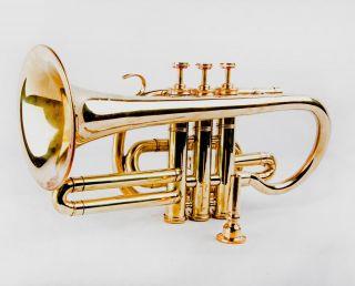 Musical Instrument Newly Brass Made Antique Style Pocket Trumpet Cornet Hc 043 photo