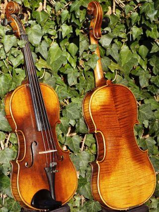 Fine Vintage Czech Violin By Emanuel Huller,  Graslitz.  Solid Build & Sound. photo