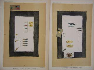 2 Antique Native American Indian Blanket Rug Medicine Tubes Litho Prints 1889 photo