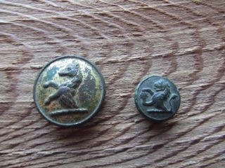 Georgian Britian.  Two Gilt Bronze Livery Buttons. photo