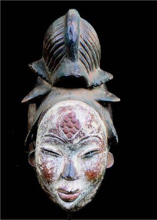 Old Tribal Punu Maiden Spirit Mask - - Gabon photo