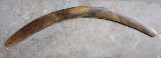 Large Old Central Australian Aboriginal Boomerang photo
