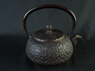 B8021:japanese Iron Sculpture Small Tea Kettle Teapot Nambu Tetsubin,  Auto photo
