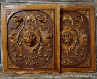 Pair Lion Female Griffin 22.  8 In Panel Antique French Carved Wood Pediment 19 Th photo