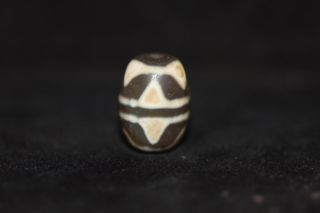 Tibetan Prayer Worry Dzi Bead Eye Teeth Amulet Gzi Antique Tibet 0113 photo