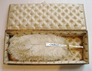 Antique Ladies Fan Mop Feathers In Tufted Silk Lined Presentation Box photo