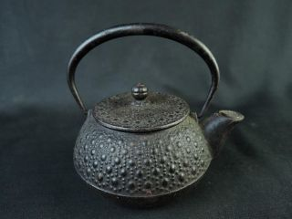 B8900: Japanese Iron Small Tea Kettle Teapot Nambu Tetsubin,  Iwachu Made photo