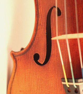 Very Old Italian Violin R.  Antoniazzi Geige Violon Violino Violine 小提琴 バイオリン photo