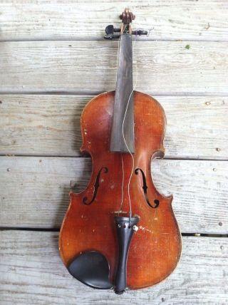 Antique Violin -