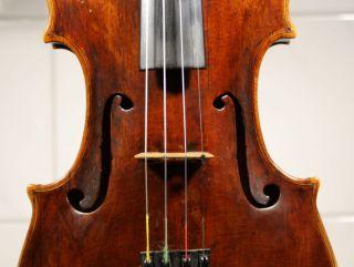 German/bohemian Violin Of The Hoyer Family Around 1770 photo