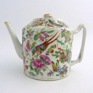 19th Century Chinese Canton Rose Mandarin Porcelain Tea Pot photo