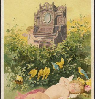 Story & Clark Organ Chicago Cherub Cupid Fairy Victorian Advertising Trade Card photo