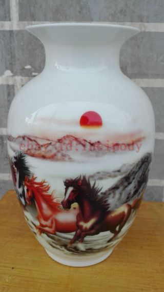 China Decorative Painting Martu Famille Rose Porcelain Vase photo
