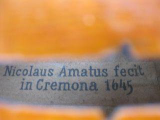 Antique Italian Nicolaus Amatus Fecit In Cremona 1645 Violin photo