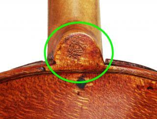 Italian,  Antique Mathias Albani 4/4 Labeled Old Master Violin photo