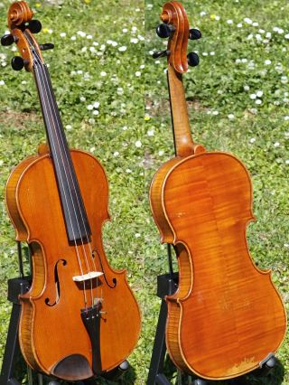 Antique Czech Violin Labelled Rudolf Schuster,  Schonbach,  1922.  Mature Tone photo