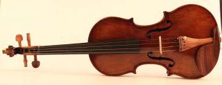 300 Years Old Italian Violin P.  Guarneri Geige Violon Violino Violine 小提琴 バイオリン photo