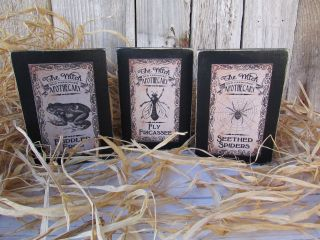 3 Vintage Look Halloween Apothecary Wood Block Shelf Sitters Frog Fly Spider photo