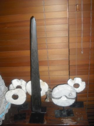 Old Vintage Carved Swordfish Bill Rare Sword Spear Aboriginal East Timor Stunnin photo