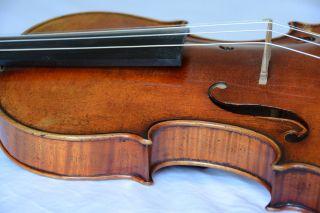 Fine Old Antique German Master Violin Made & Signed By Leonardo Genaro 1916 photo